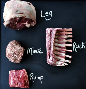12_What's in the box - Hogget (b)